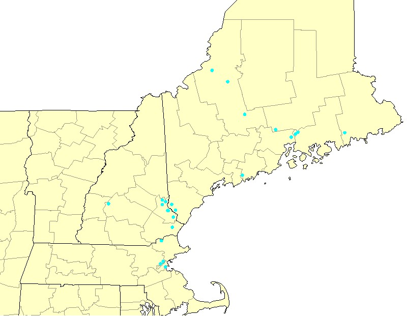 Birthplaces of some Division I descendants in New England born with the Corson/Colson surname